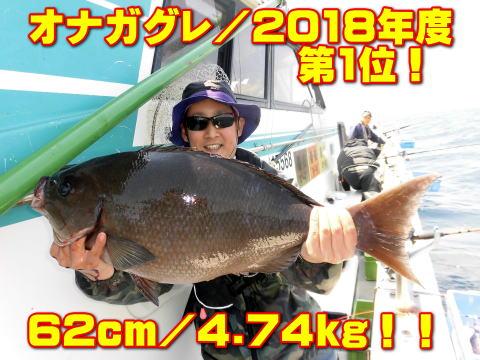 オナガグレ/2018年度        第1位!       62cm/4.74kg!!